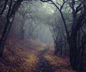 dark, Darkness, and fog image