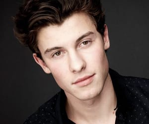 boy, shawn mendes, and singer image
