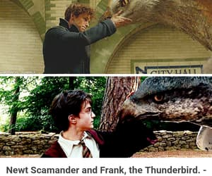 harry potter, hp, and movie image