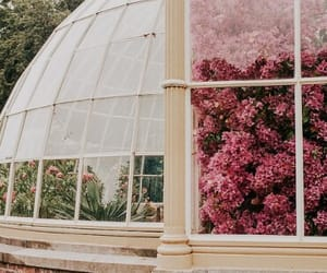 flowers, architecture, and nature image