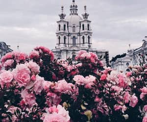 flowers, pink, and building image