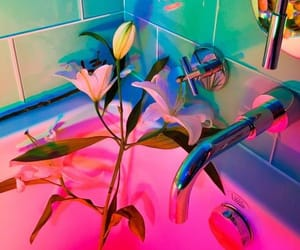 flowrs, neon, and pink image