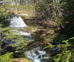 hiking, trees, and water image