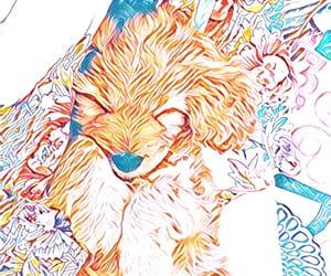 animal, dog, and edit image
