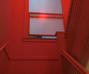 red, aesthetic, and photography image