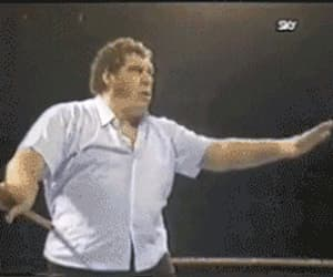 gif, memes, and : andre the giant image