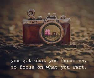 focus, life, and motivation image