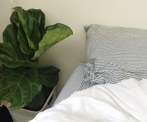 interior, minimalism, and minimal image