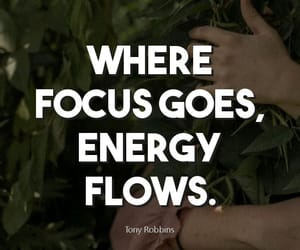 ambition, career, and focus image