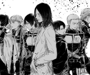 attack on titan, snk, and mikasa image