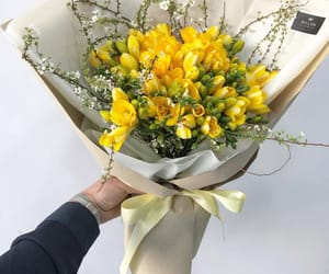 aesthetics, flower, and yellow image