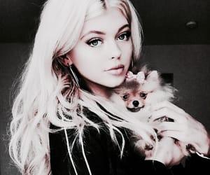 celebrities, puppy, and loren image