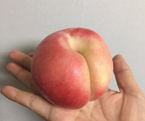 peach, soft, and aesthetic image