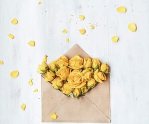 flowers, Letter, and yellow image