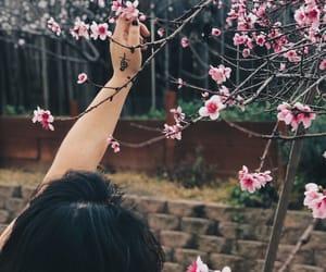 music, sakura, and flowe image
