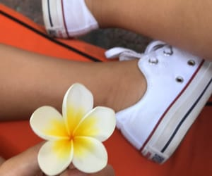 converse, flower, and shoes image