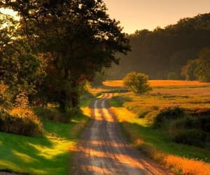 country, nature, and road image
