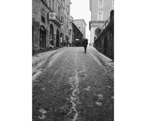 photography, snow, and blacknwhite image