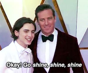 gif, armie hammer, and call me by your name image