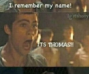 actors, funny, and maze runner image