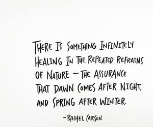 dawn, healing, and nature image