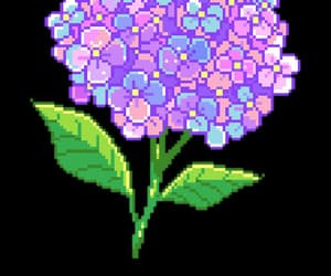 edit, png, and flower image