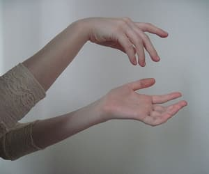 hands, pale, and body image
