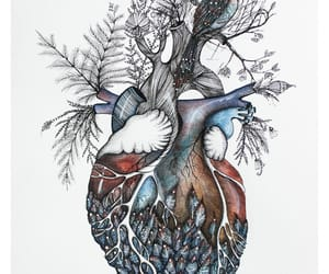 heart, animal, and art image