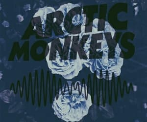 arctic monkeys, flowers, and wallpaper image
