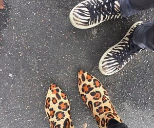 jungle, shoes, and urban image