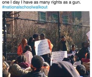 civil rights, discrimination, and gun control image