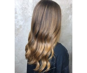 hair, hairinspo, and ombre image