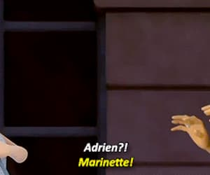 gif, miraculous ladybug, and adrien agreste image