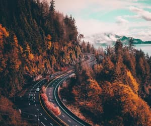 autumn, landscapes, and natural image