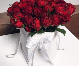 bouquet, pretty, and red image
