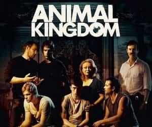 Animal kingdom and australian movie image