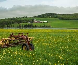country living, farmland, and farm image