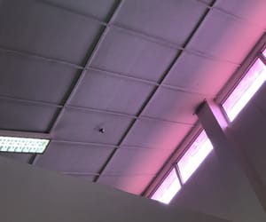 ceiling, light, and purple image