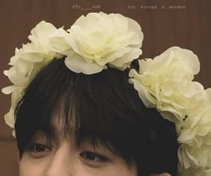 flowers, kpop, and Seventeen image