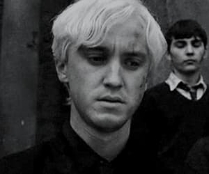 gif, harrypotter, and tomfelton image