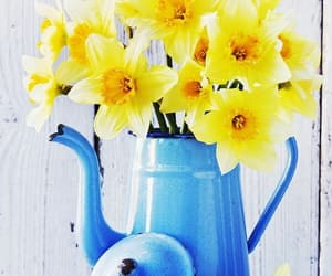 aesthetic, blue, and daffodils image