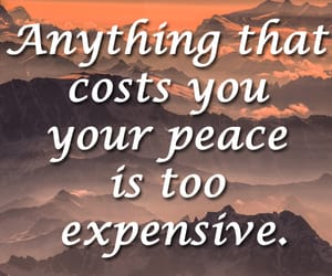 expensive, quotes, and life quotes image