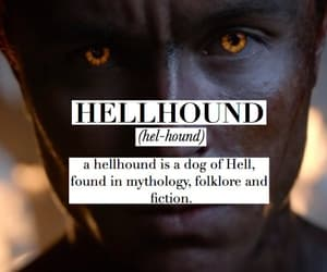 teen wolf, parrish, and hellhound image