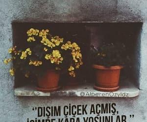 flower, alıntı, and türkçe sözler image
