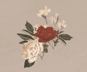 shawn mendes, sm3, and flowers image