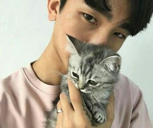 cat, ulzzang, and asian image