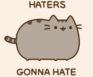 cat, pusheen, and haters image