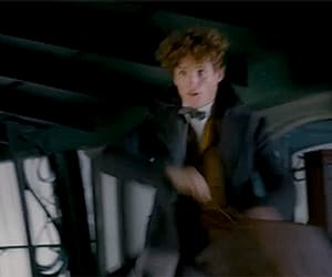 eddie redmayne, gif, and harry potter image