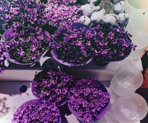 aesthetic, flowers, and purple tumblr image