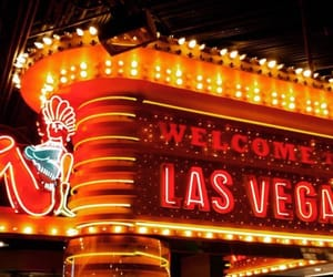 orange, Las Vegas, and signs image